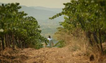 retratos-del-vijazz-millor-curt-internacional-al-wine-flavours-film-festival